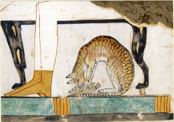 History of Cats: Do Felines Absolutely control our Lives?