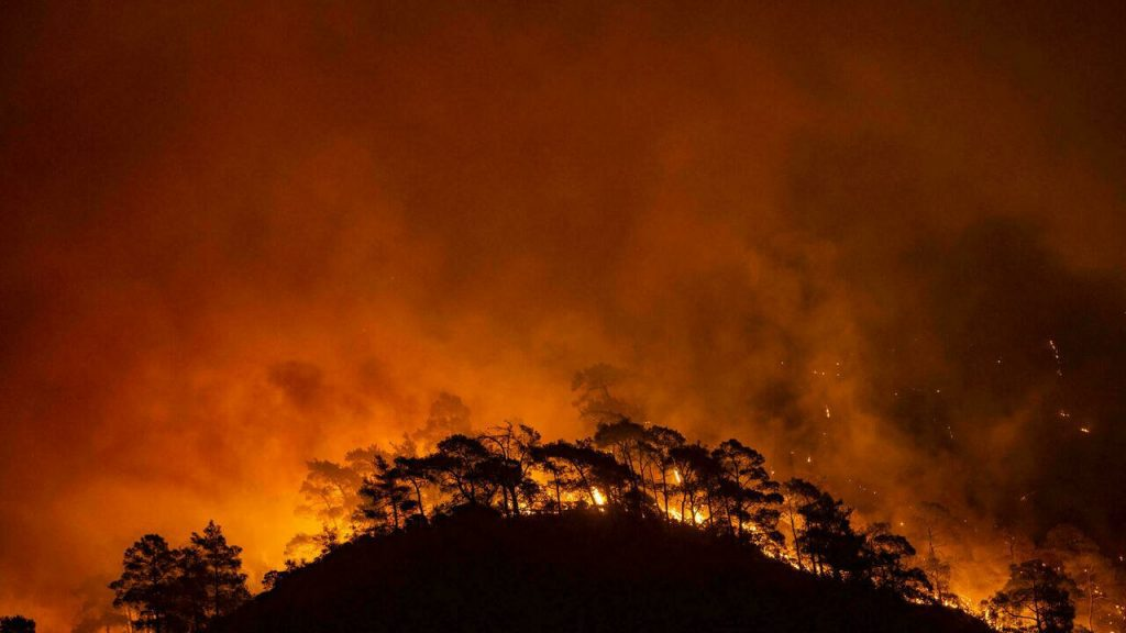 We're Literally Watching the World Burn: Wildfires in Algeria and Greece