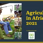 Agriculture in Africa 2021: Oxford Business Group teams with OCP Group for sectoral analysis