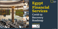 Report: Egypt's Covid Response Report (CRR)